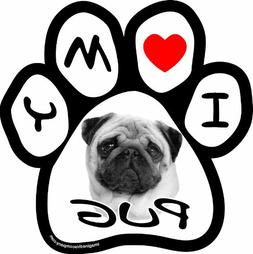 Imagine This 5-1/2-Inch by 5-1/2-Inch Car Magnet Picture Paw