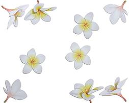 Car Magnets Plumeria set of 9