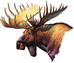 "Moose Car Magnet Auto Truck Safe New Hunting 9.5"" Wide Magne"