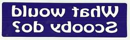 WHAT WOULD SCOOBY DO? Novelty Bumper Magnet Scooby Doo tribu